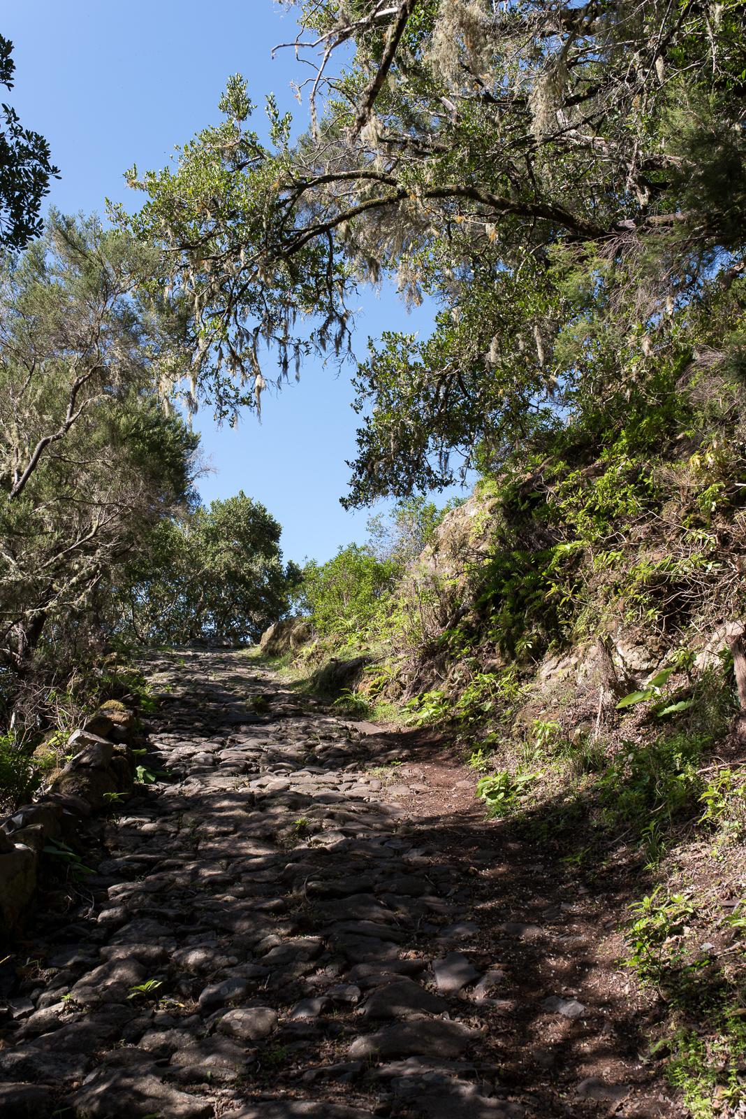 Camino de Jinama