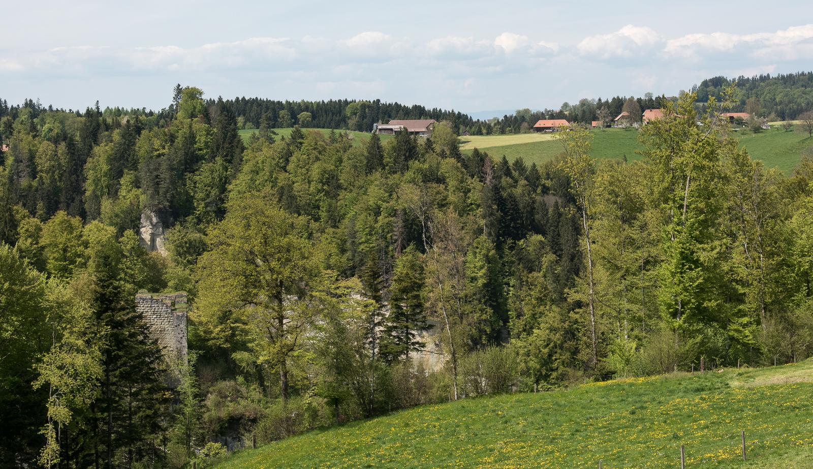 Grasburg