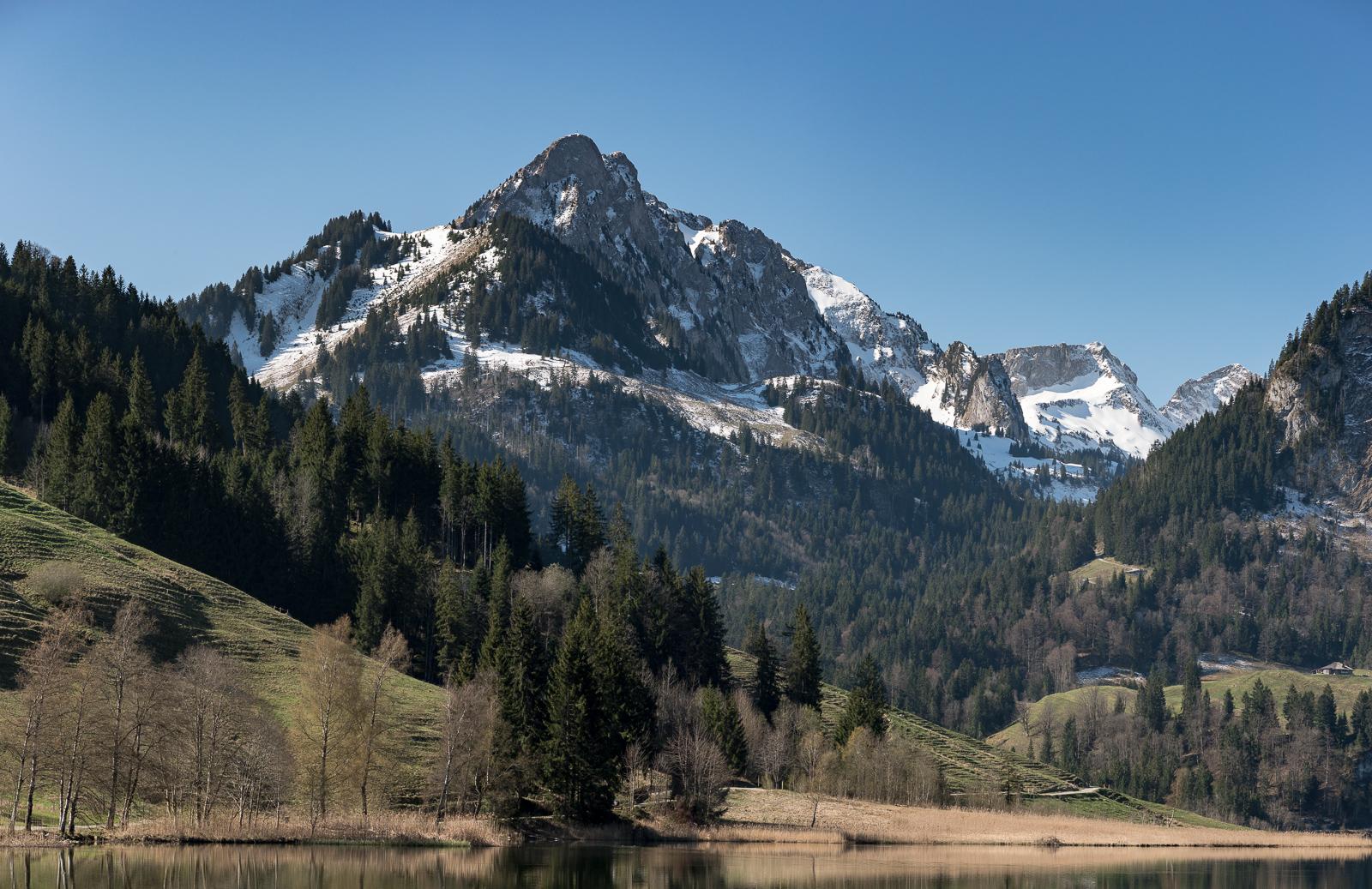 Spitzflue am Schwarzsee