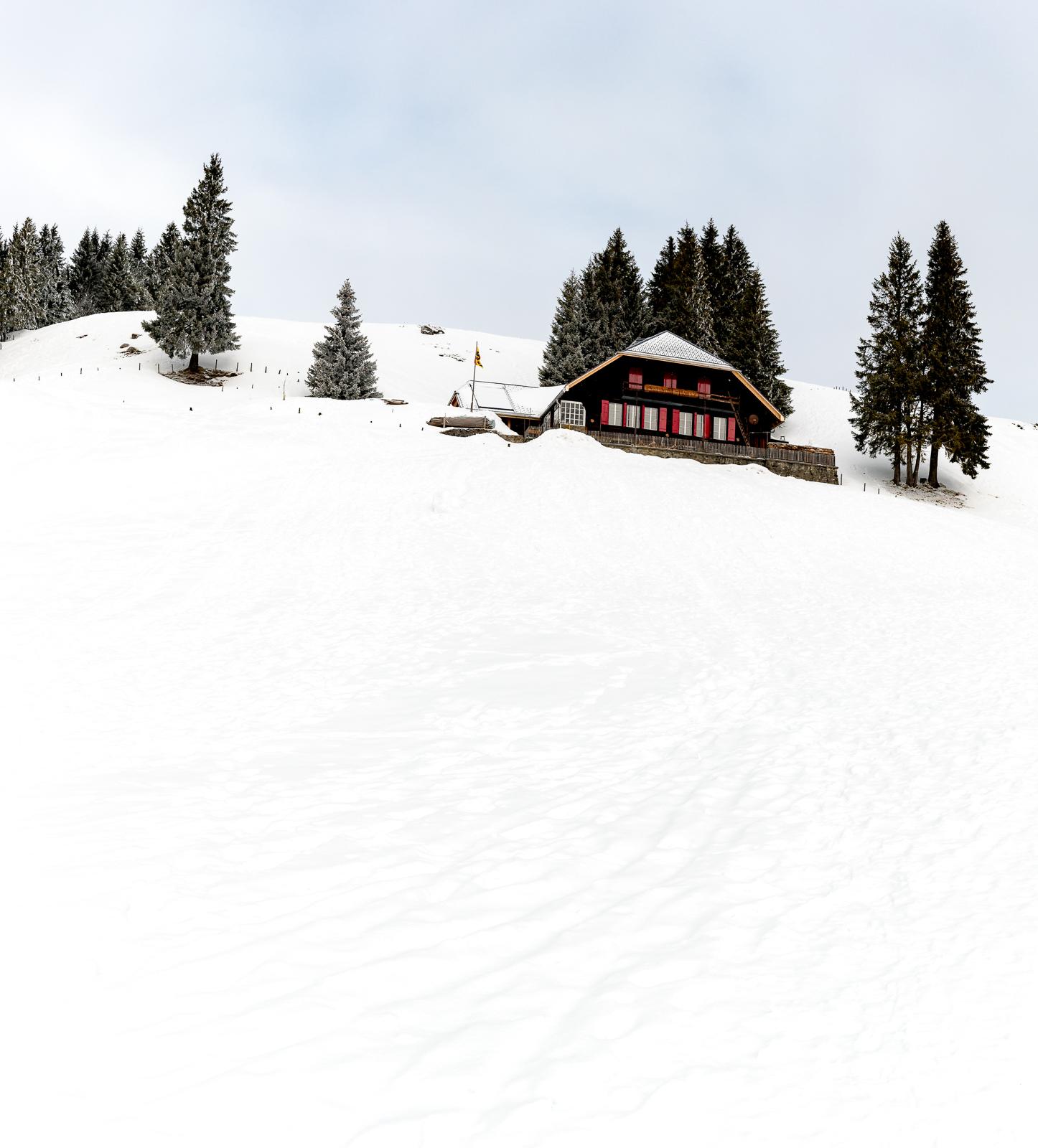 Das Selibühl-Haus