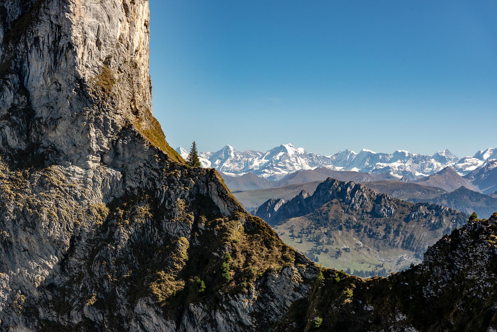 Die Alpen im Hintergrund